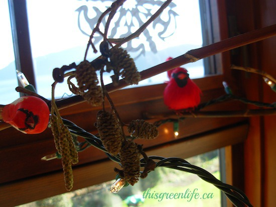 red bird on alder branch Xmas