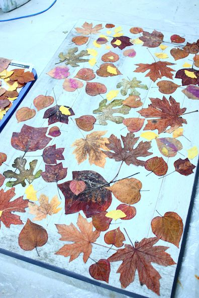 laying leaves on tabletop