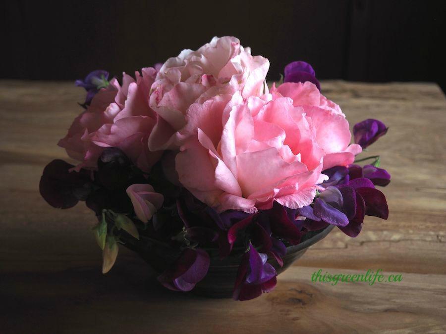 granny's roses